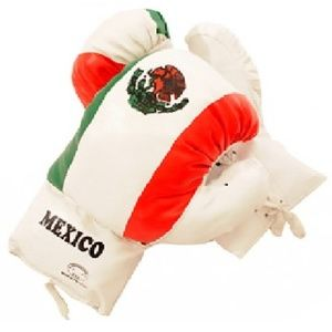 Mexican Flag Boxing Gloves 18 oz Last Punch